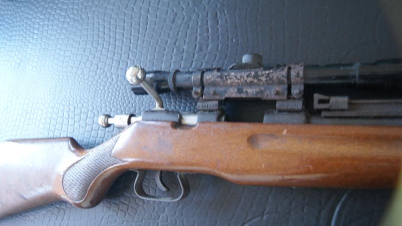 Carabine Dsc07012