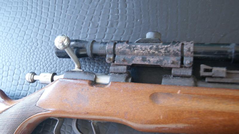 Carabine Dsc07013
