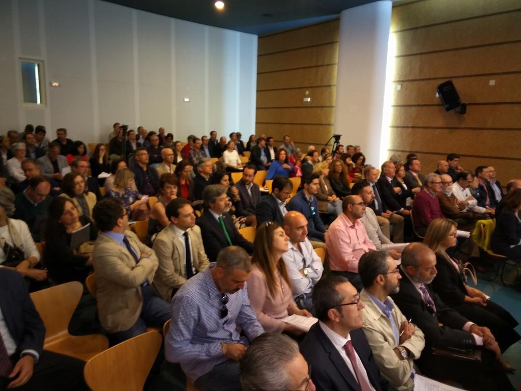 Presentación del Programa Integral de Silicosis de Andalucia (PISA) Esta110
