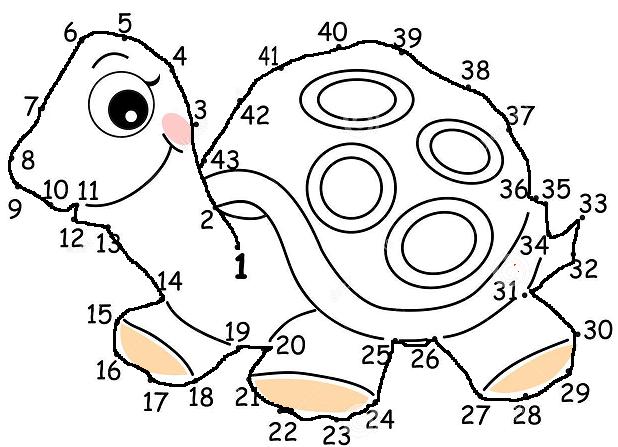 Elenco Partecipazioni: Gioca con la tartaruga Zaratan #1 - Pagina 3 Immagi10