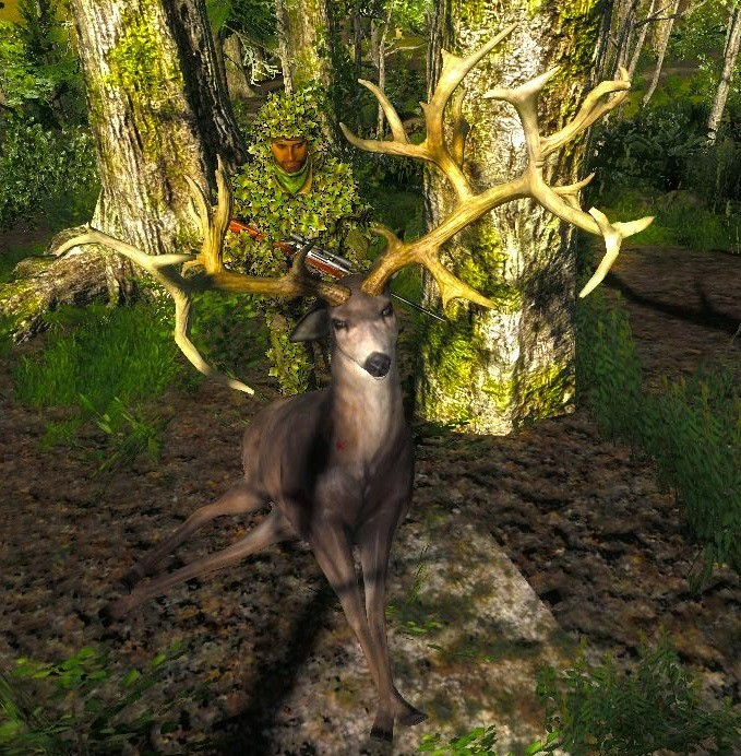 TOP 5 Mule Deer // Ciervo Mula (Non-Typical) Mule_n10