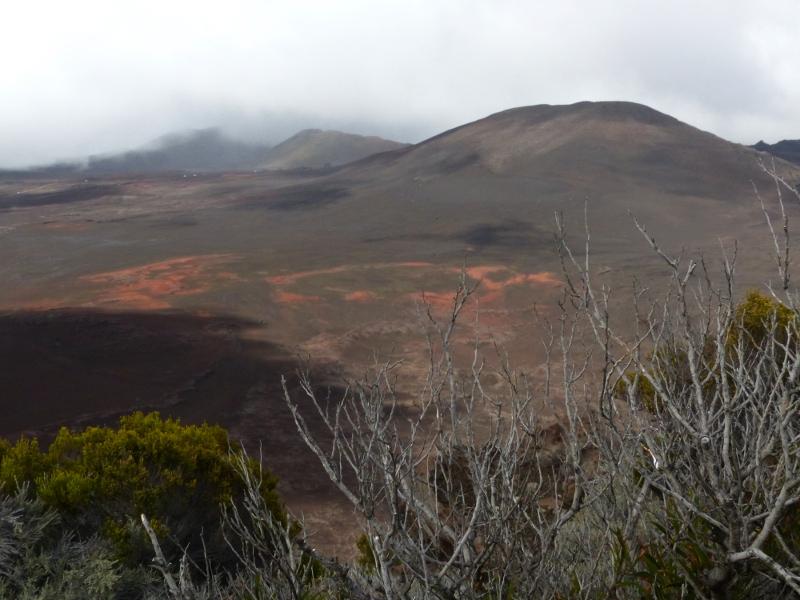 Surprise et doutes au volcan P1060311