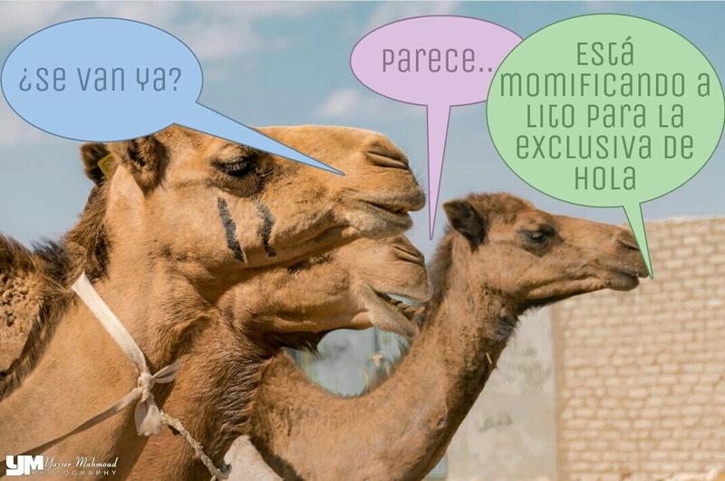 No hay foro sin Vaga ni Vaga sin foro - La Moussa Vega Royo-Villanova - Página 6 Picsar10