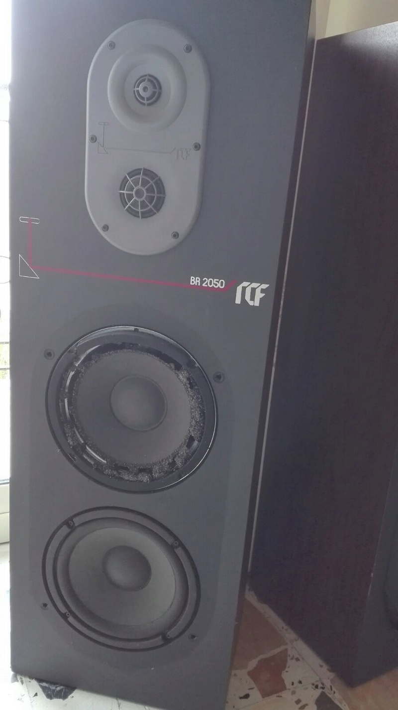 Recuperare RCF 2050 Img-2011