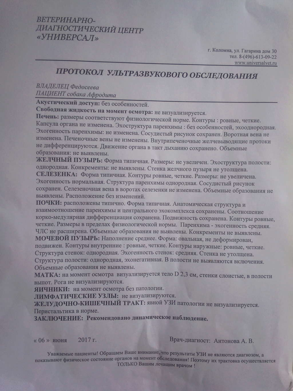 Москва, Афродита, сука 2,5 г - Страница 6 Img_2045