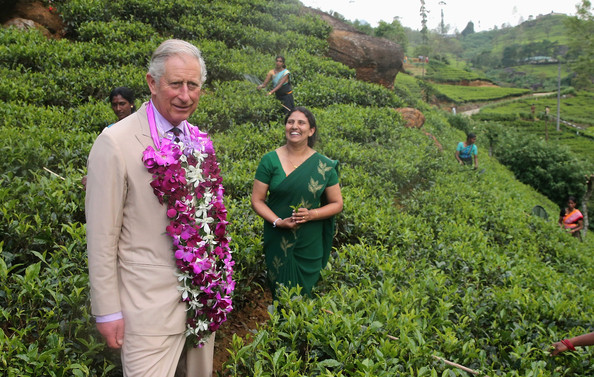Sri Lanka: Queen Elizabeth 2's son Prince Charles increased Dr. Chris Nonis' Agalawatte Losses by 10%, Damro to now bear losses up to Rs.3.3 Bn owed to Banks Prince11