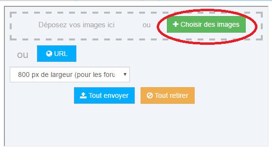 Inserer une Photo Choisi10