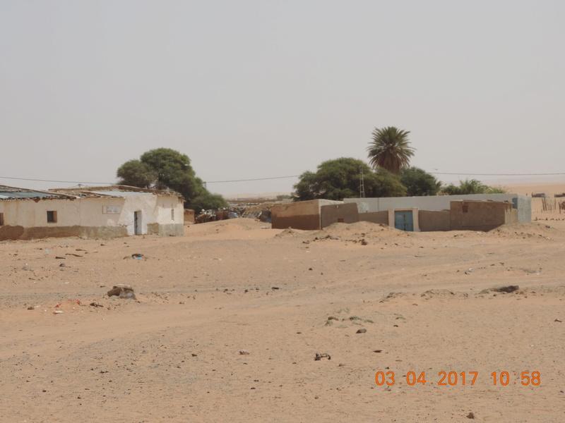 Cuaderno de campo: expedición Campos de Refugiados Saharauis en Tindouf ( Argelia) - Página 2 Dscn2311