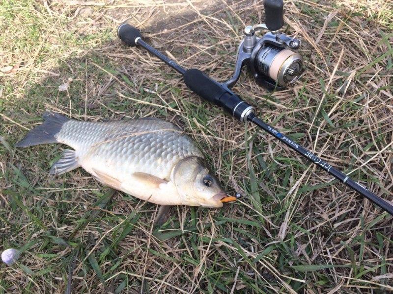 Отчёты о рыбалках - Страница 31 A9he0f10