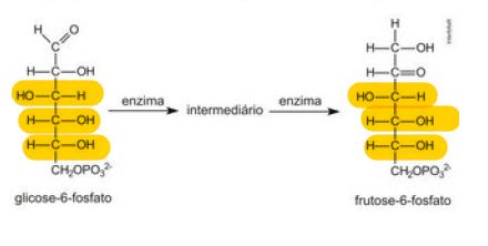 Síntese organica Glicol11