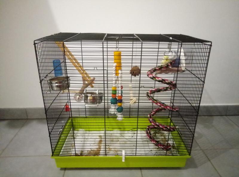 ma nouvelle cage P7040910