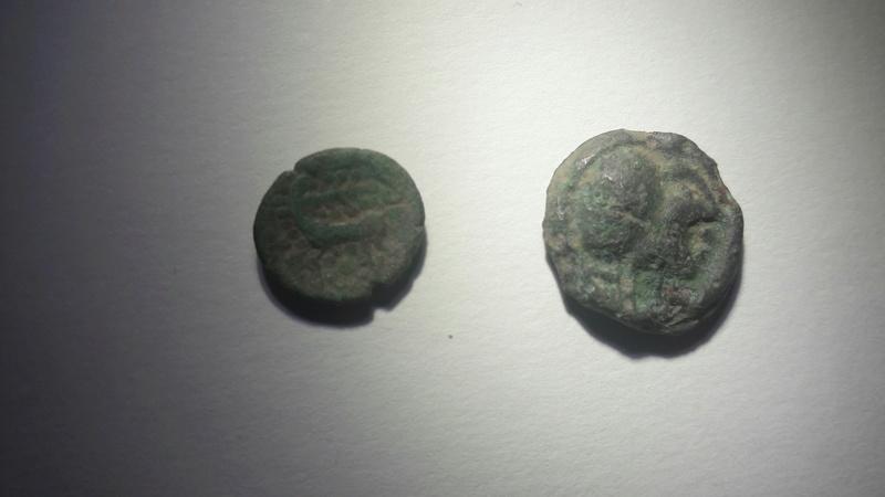 identification deux bronzes inconnus gaulois 20170435