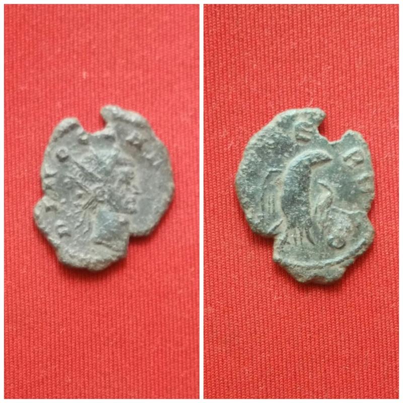 Antoniniano de Claudio II El Gótico. CONSECRATIO. Águila explayada a dcha. Ceca Siscia. Picsar14