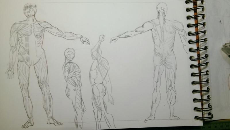 Semaine de dessin les bases 1 - Page 3 Imag0014