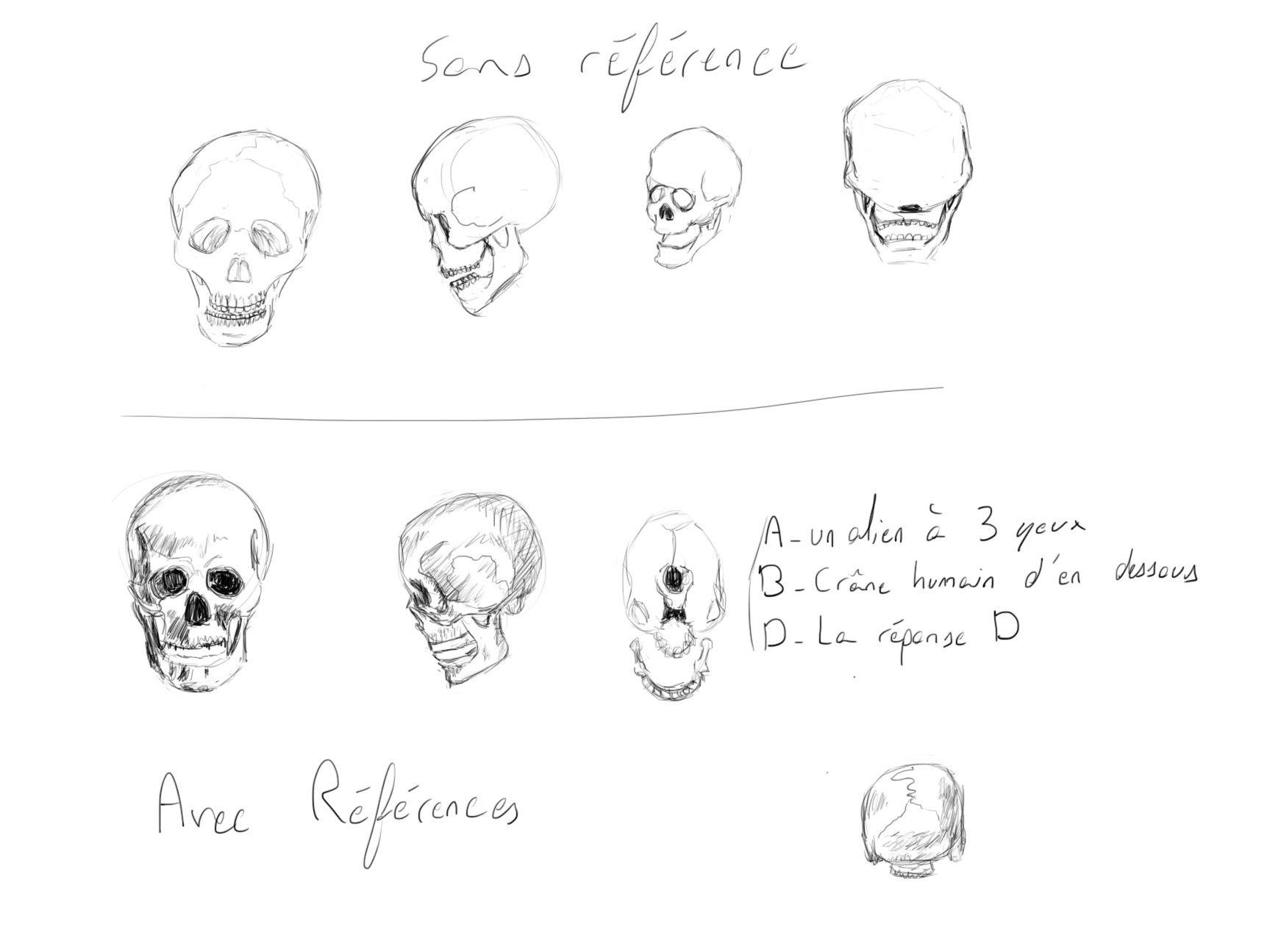 Semaine de dessin les bases 1 - Page 2 Skull12
