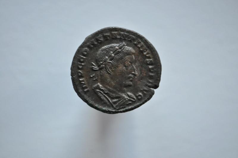 Coeur de Rome fait baver  Brutus Dsc_0055