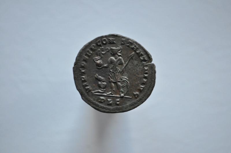 Coeur de Rome fait baver  Brutus Dsc_0056