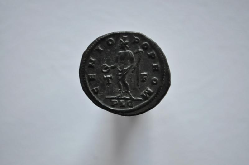 Coeur de Rome fait baver  Brutus Dsc_0058