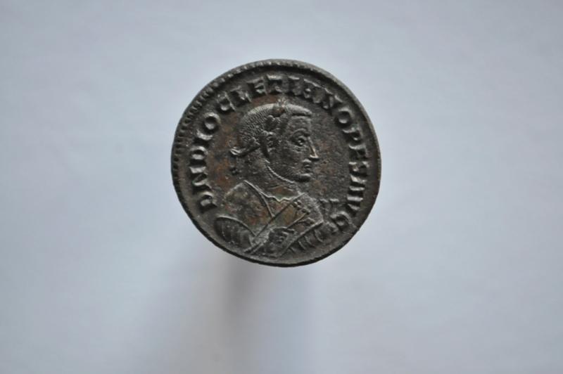 Coeur de Rome fait baver  Brutus Dsc_0063