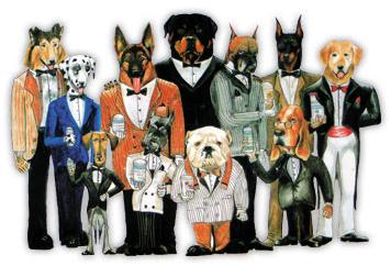 ВИТАМИНЫ Canina10