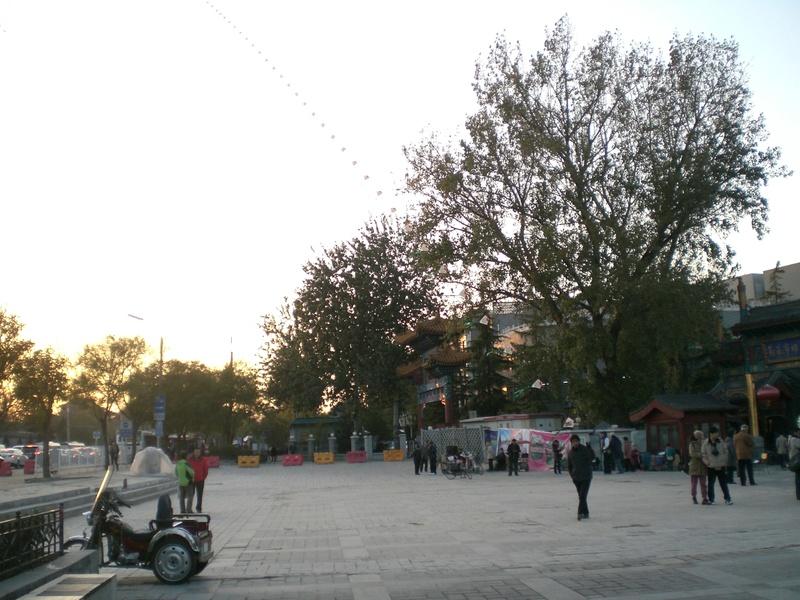 Cerf Volant en Chine Cimg1410