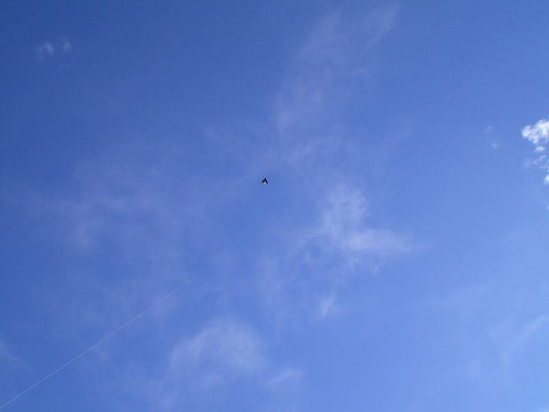 Cerf Volant en Chine Cimg1711