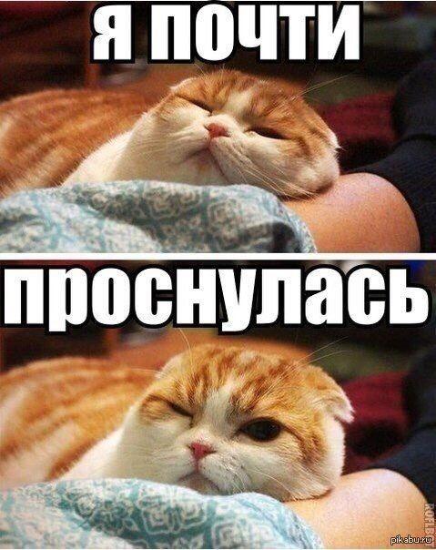 Юмор, приколы... Imagee10