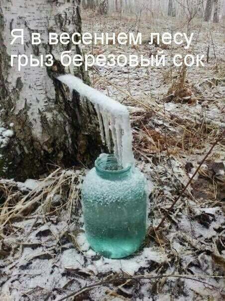 Юмор, приколы... Imaget10