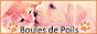 Cadeau pour Boules De Poils 88x3515
