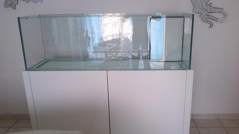 aquarium 300l  Img_2025
