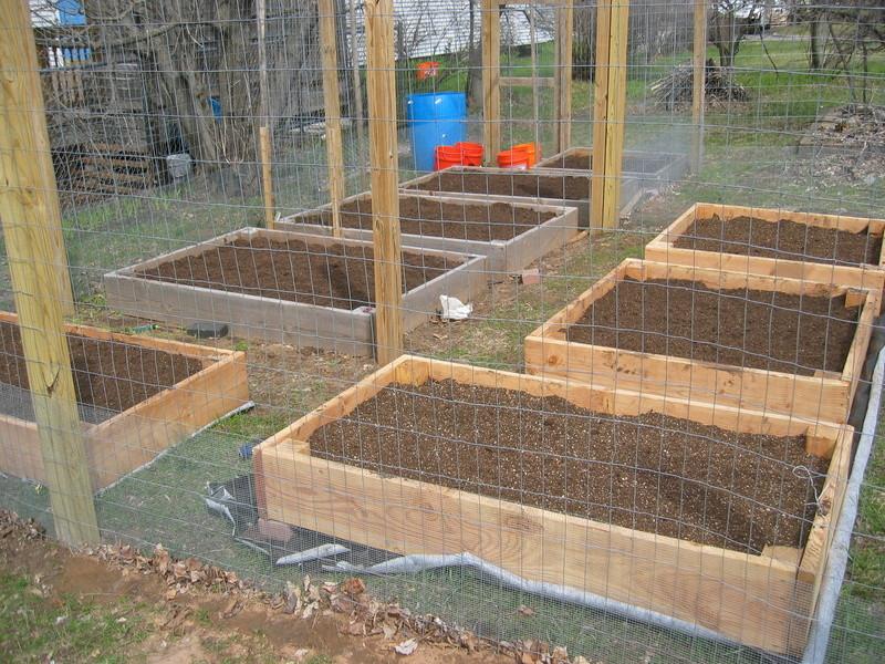 garden ready need better weather Img_2210
