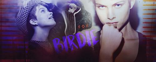 Adult Applications Birdie10