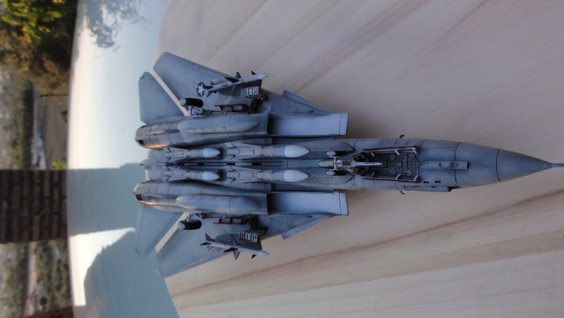 F-14A Tomcat Wolfpack 1/72 Academy(noooot) Dsc01026