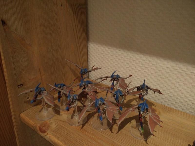 Flotte ruche Celestus  Img_2033