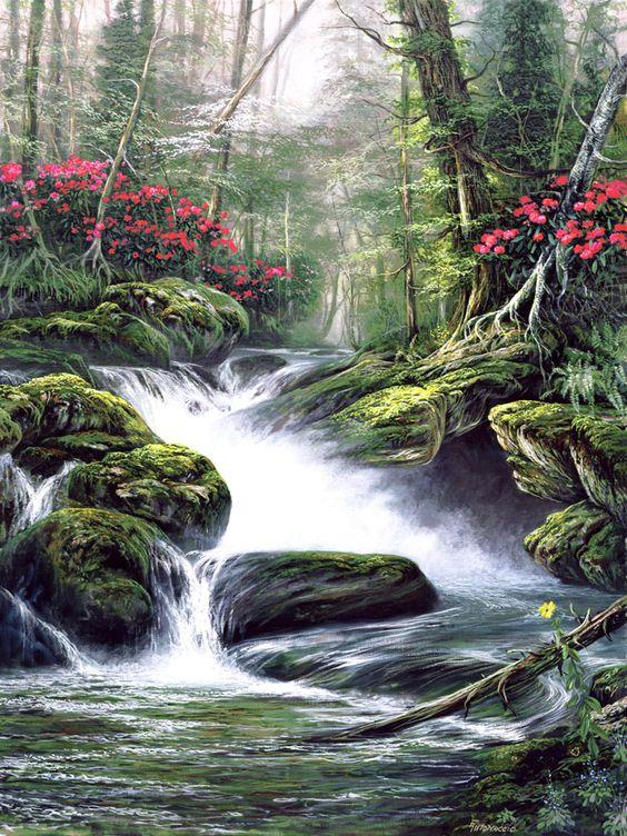 L'eau paisible des ruisseaux et petites rivières  - Page 14 4e84b510