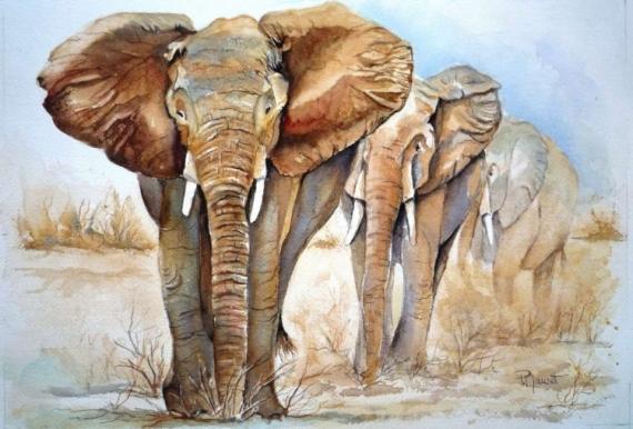 Les animaux peints à l'AQUARELLE - Page 7 746fb710