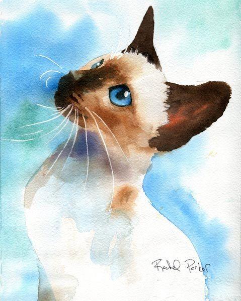 Les animaux peints à l'AQUARELLE - Page 7 9c3aa610