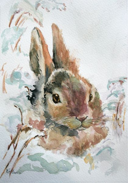 Les animaux peints à l'AQUARELLE - Page 7 Cccfe010