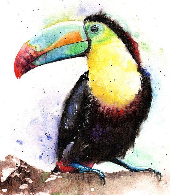 Les animaux peints à l'AQUARELLE - Page 8 Df2c1710