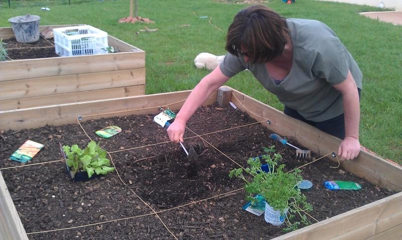 Que se passe t'il au jardin? - Page 2 Thumb_12