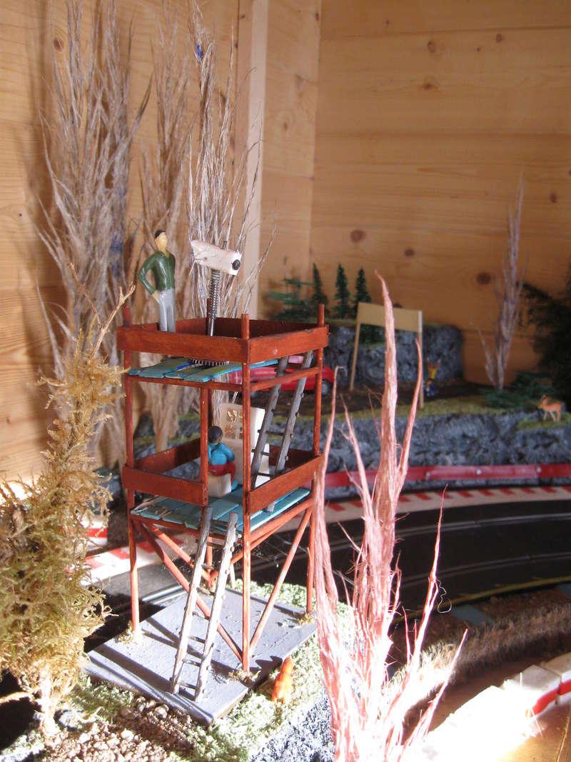 circuit ninco dans l abrit de jardin  Img_6710