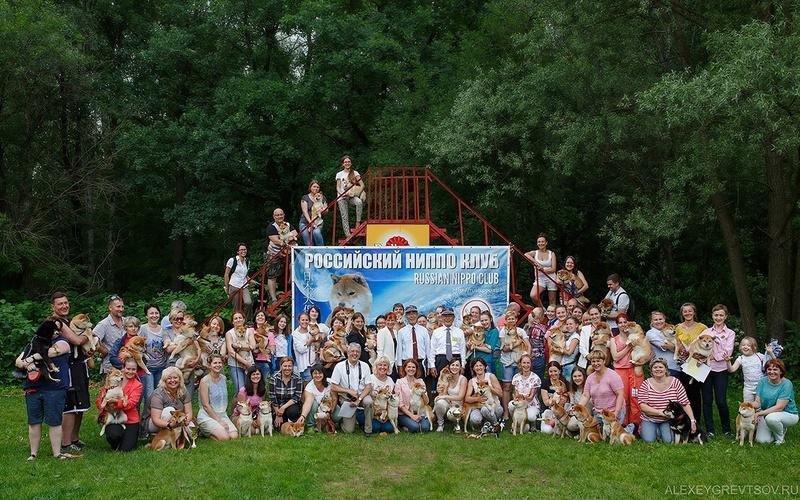 5-ое юбилейное NIPPO SHOW - 2017 в Москве Ci_qob10