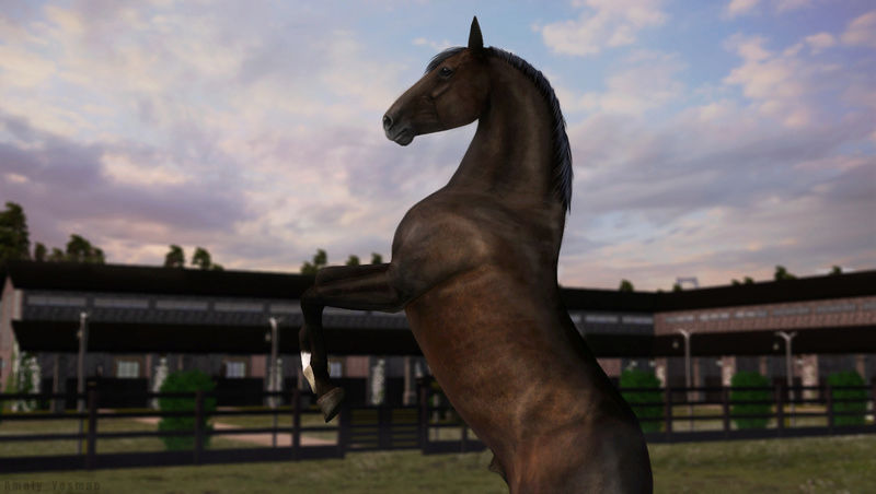 "Equestrian Centre ""Silver Ambassadors"" - Страница 27 Screen11"
