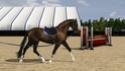 "Equestrian Centre ""Silver Ambassadors"" - Страница 27 Screen16"