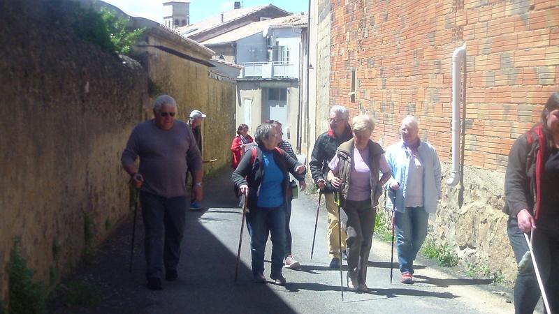 Samedi 06 Mai Tourouzelle :  La pinède de la Bade Sam_0716