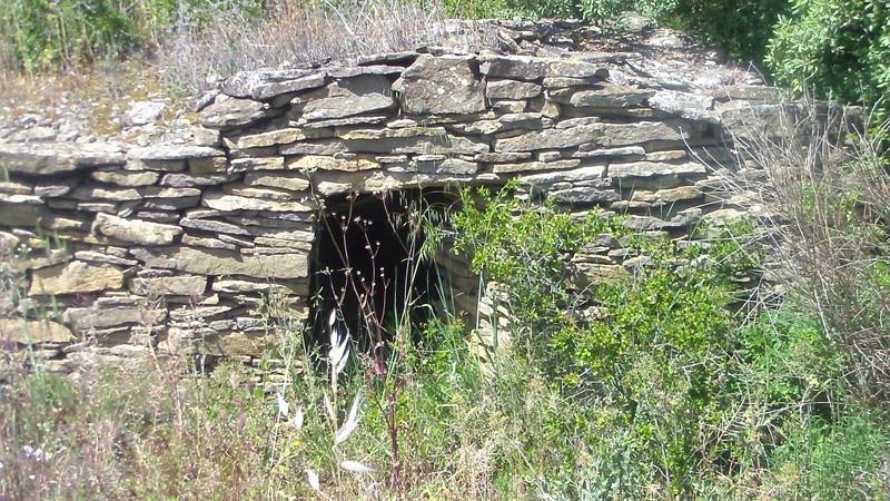 Samedi 06 Mai Tourouzelle :  La pinède de la Bade Sam_0723