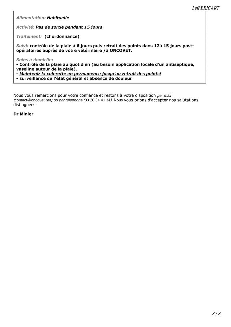 LEFF - mâle croisé de taille petite à moyenne, né env 2014  - adopté par Remi (Belgique) - Page 3 000210