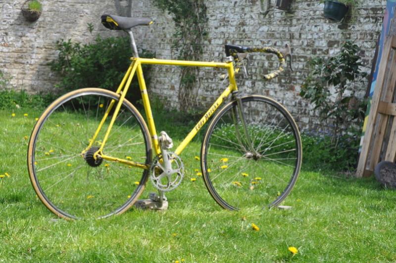 Eddy Merckx strada jaune Dsc_0023