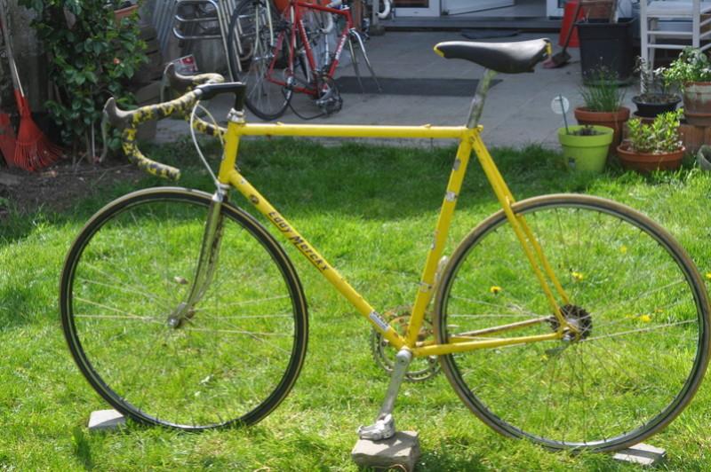 Eddy Merckx strada jaune Dsc_0028