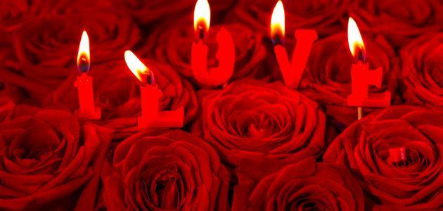 كلام احبك بجنون احلى حب 817
